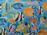 Vissen - Ansichtkaart vierkant_