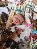 Kaart Baby en Dieren_