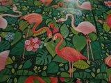 Flamingo's - Ansichtkaart vierkant_