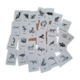 Alfabet Dieren Zwart/Wit - Setje van 26 Kleine Kaartjes_