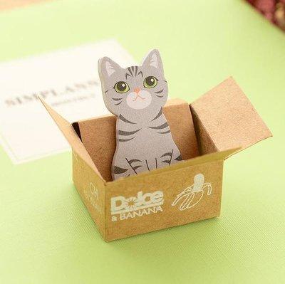 Kat in Doosje Grijs Memo