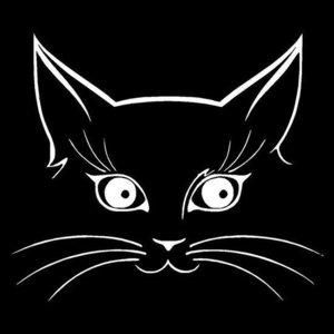 Kat Poes Gezicht Zilverkleurig - Autosticker