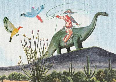 Cowboy op Dino - Ansichtkaart