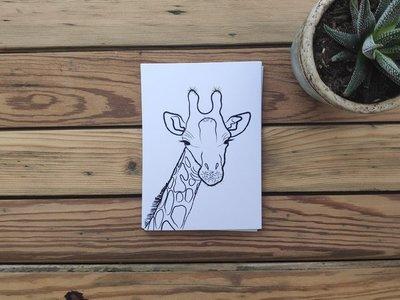 Giraffe - Ansichtkaart