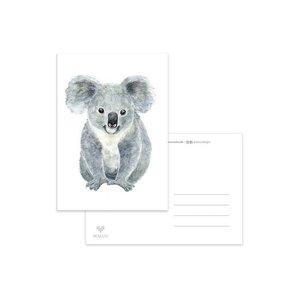 Koala - Ansichtkaart