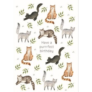 Have a purrrfect birthday Katten Patroon - Dubbele Kaart met Envelop