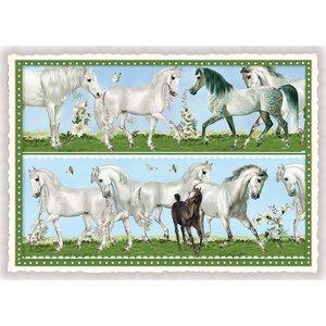 Paarden - Ansichtkaart