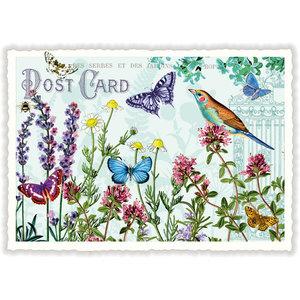 Vlinders en Vogel - Ansichtkaart
