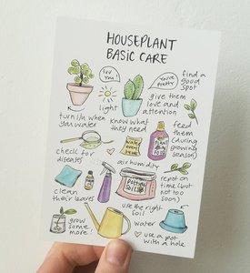 Houseplant Basic Care  - Ansichtkaart